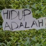 HIDUP ADALAH BELAJAR