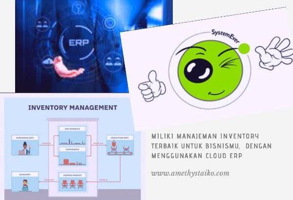 ERP manajemen inventory terbaik SystemEver Indonesia